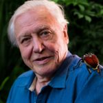 David Attenborough and a Perfect Pokemon Fit