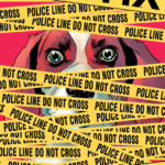 The Fix #6 Review